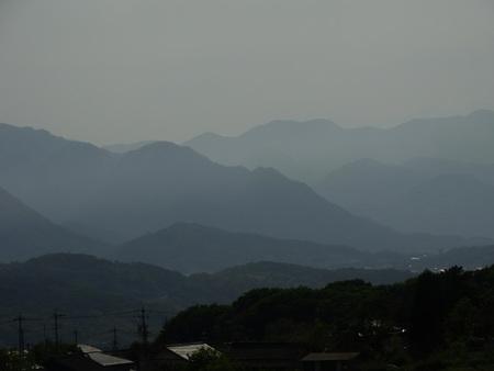新緑の美しい季節_e0120896_6441622.jpg