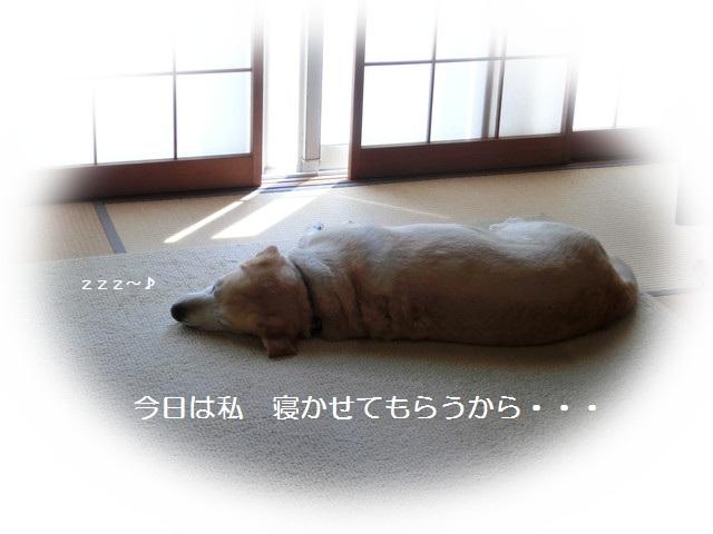 d0243802_1111141.jpg