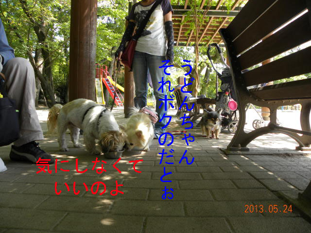 b0203018_17512734.jpg