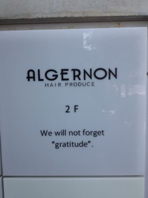 ALGERNON三番町店_b0133839_10105483.jpg