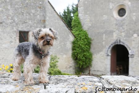 フランスで最も美しい村「Yèvre-le-Châtel」_c0024345_755869.jpg