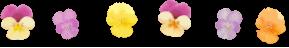 軽井沢のお土産★ツルヤのそば茶&ご当地フォルムカード_f0236260_19574390.png