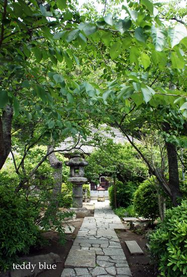 Kamakura Pilgrimage  鎌倉三十三観音巡り 一日目_e0253364_14272238.jpg