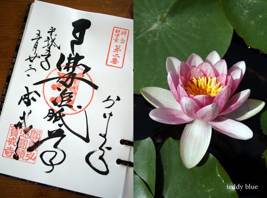 Kamakura Pilgrimage  鎌倉三十三観音巡り 一日目_e0253364_14274059.jpg