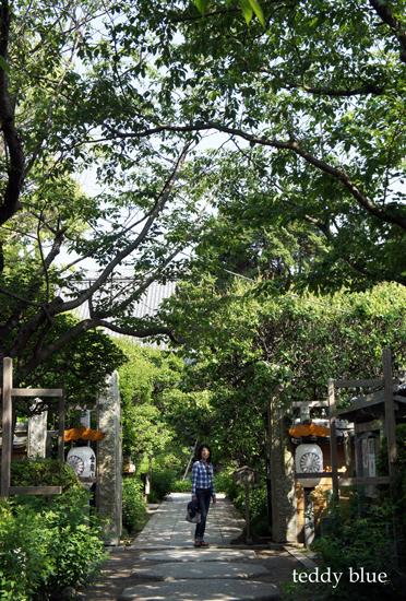 Kamakura Pilgrimage  鎌倉三十三観音巡り 一日目_e0253364_14282991.jpg