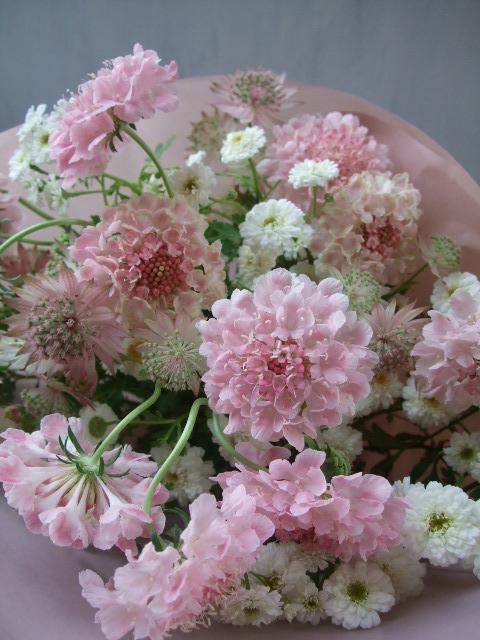 オークリーフ(季節の花束)_f0049672_16265669.jpg