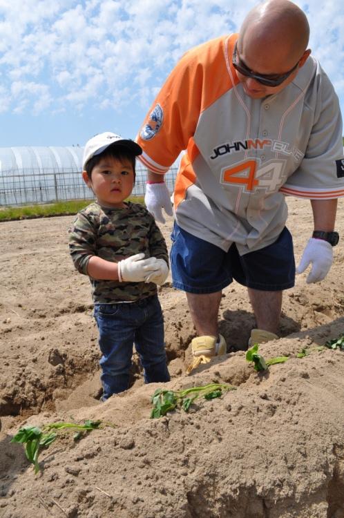 『シルじぃちゃん先生と一緒にサツマイモの苗を植えよう.』:5月24日金曜日_b0079382_13505880.jpg