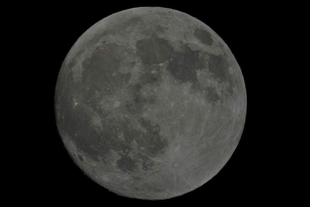 カワセミの雛/十五夜の月/金星・水星・木星の共演_b0024798_22244170.jpg