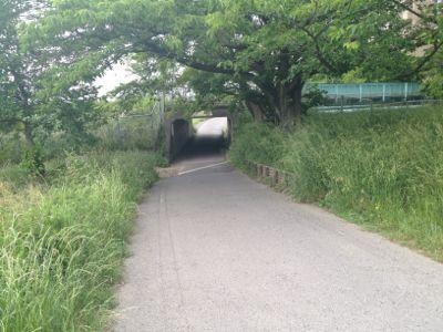 トンネルをぬけると…_e0239908_16232726.jpg
