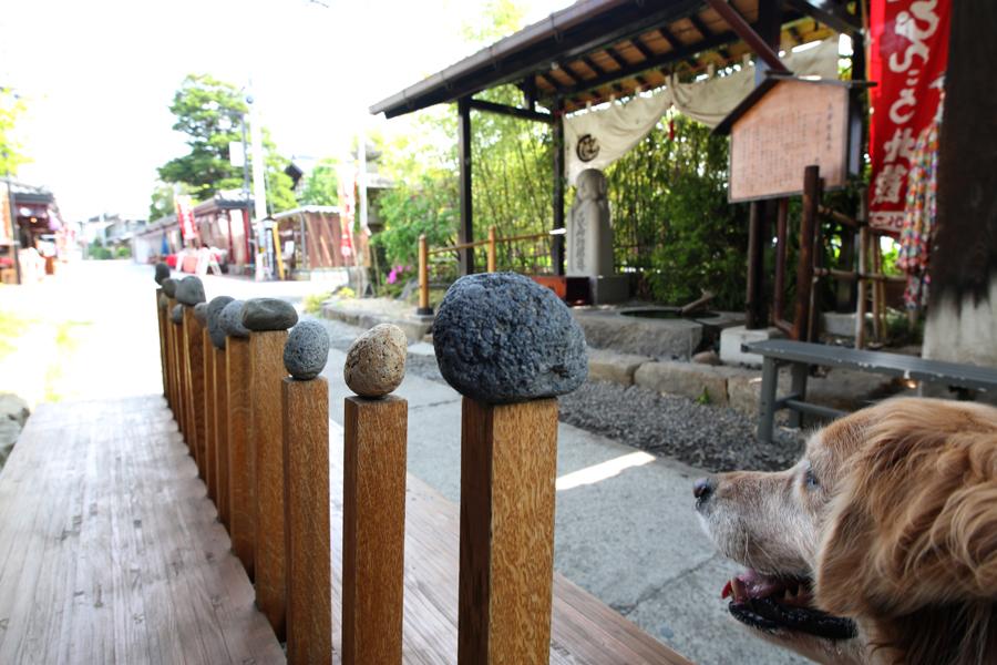 【Nagano Snapshot】 佐久4 ぴんころ地蔵_c0035245_2373658.jpg