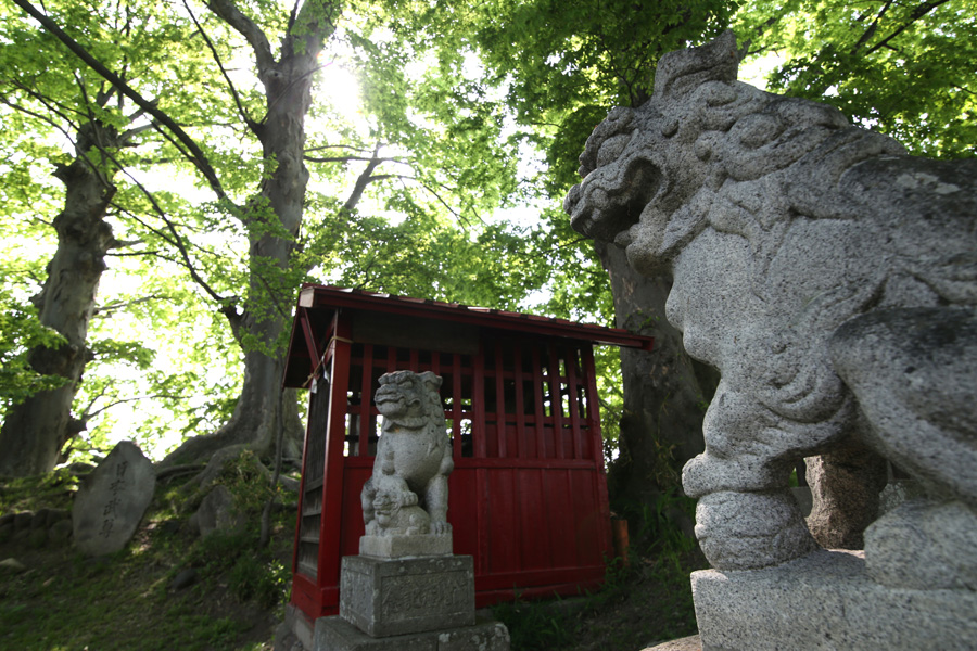 【Nagano Snapshot】 佐久4 ぴんころ地蔵_c0035245_3224472.jpg