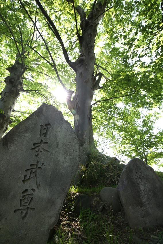 【Nagano Snapshot】 佐久4 ぴんころ地蔵_c0035245_3243171.jpg
