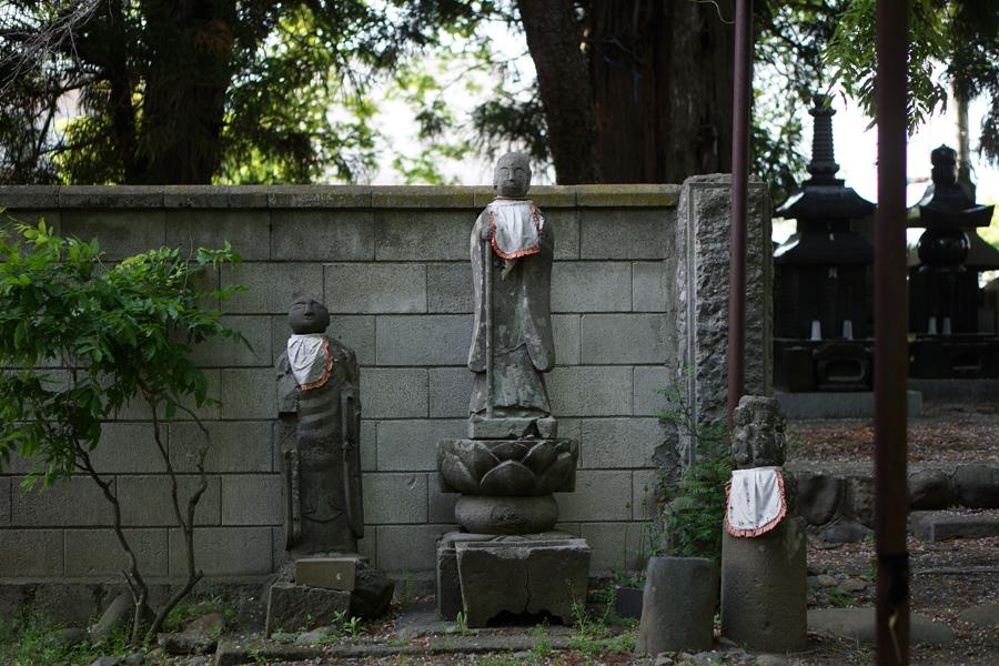 【Nagano Snapshot】 佐久4 ぴんころ地蔵_c0035245_336136.jpg