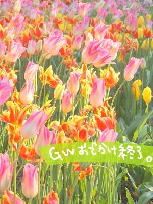 b0092580_4575279.jpg