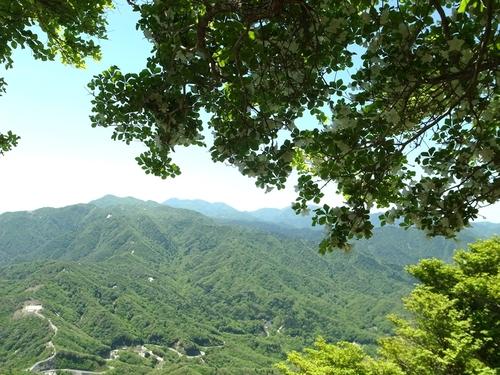 竜ヶ岳 ヒツジになれないのである_e0271890_2193344.jpg