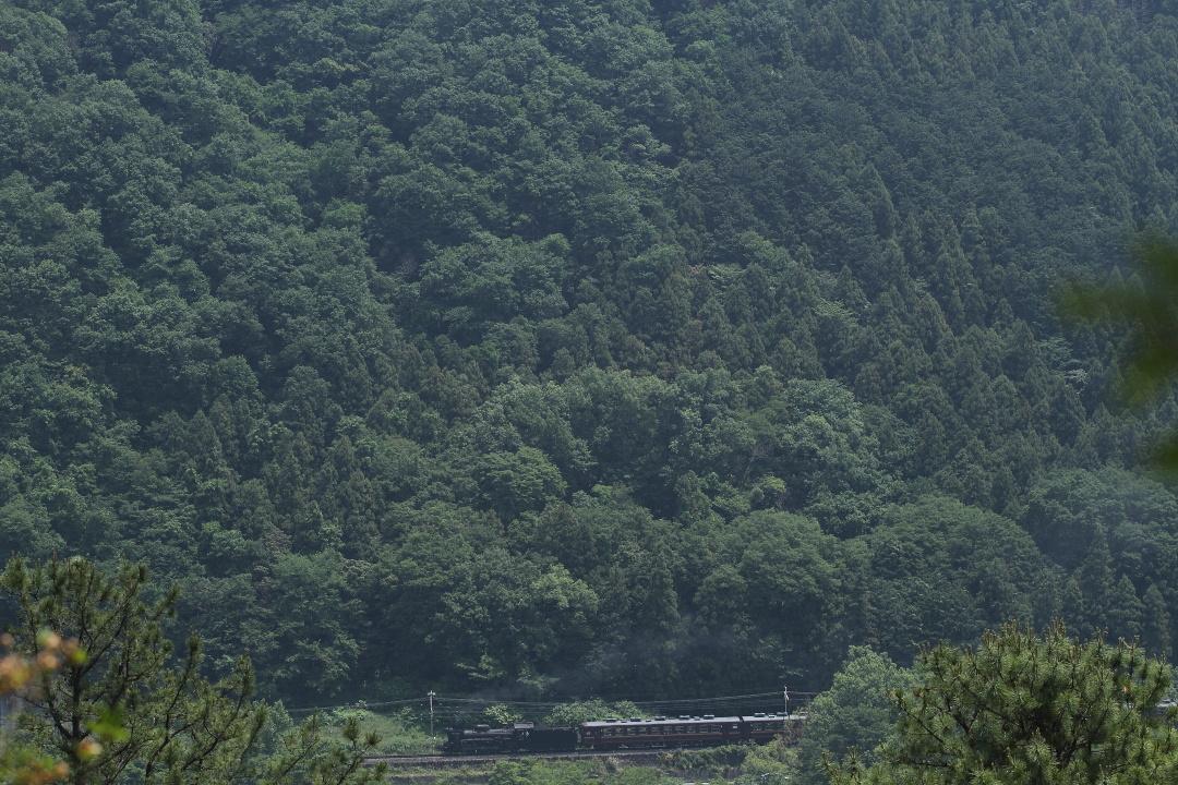 山紫に紫煙燻らせて - 2013年初夏・秩父 -  _b0190710_20214952.jpg