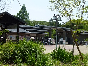 府立植物園へ_a0177314_0263816.jpg