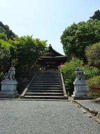 神社巡り_a0177314_216594.jpg