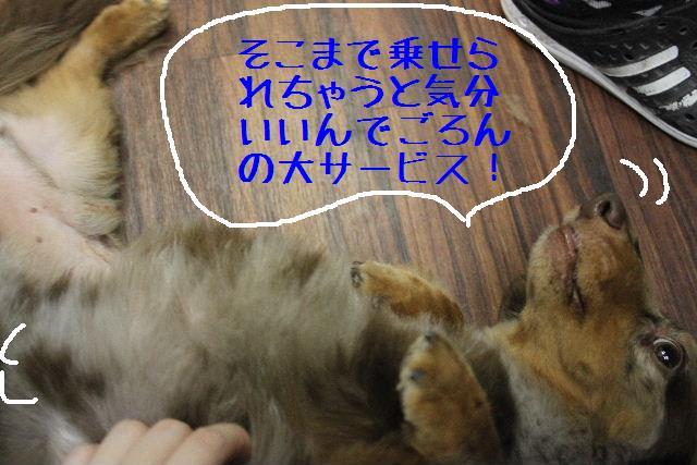 b0130018_1825358.jpg