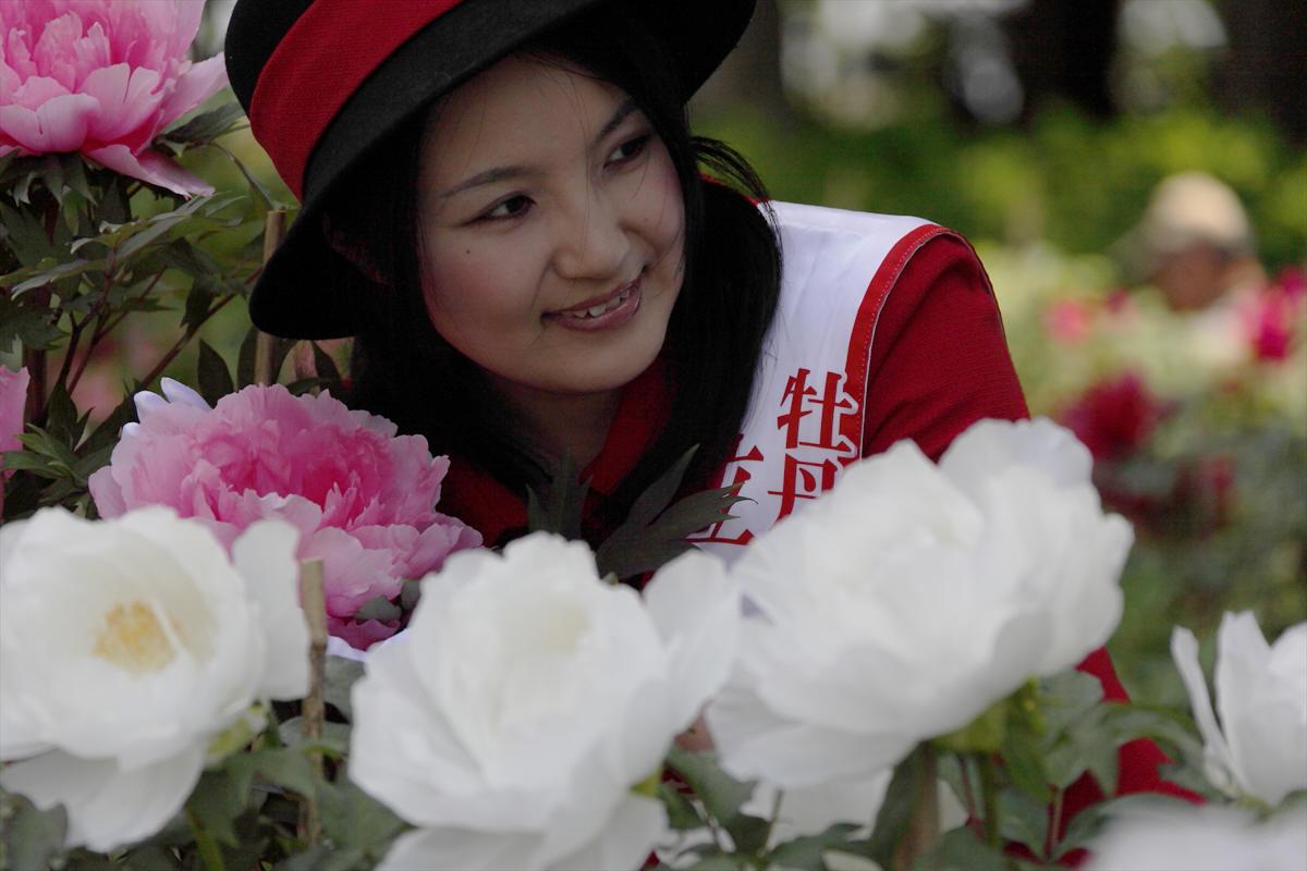 福島県須賀川市 「牡丹園」 モデル撮影会_d0106628_14393114.jpg