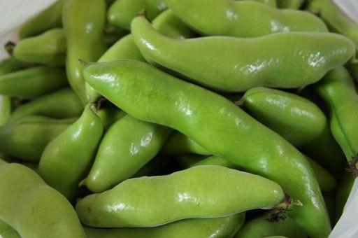 豆、豆、豆、豆~~~!!_f0155431_21461538.jpg