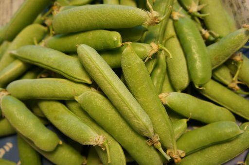 豆、豆、豆、豆~~~!!_f0155431_21472037.jpg