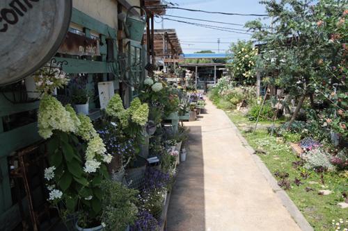 多可町NAGAYA_d0090733_16593656.jpg