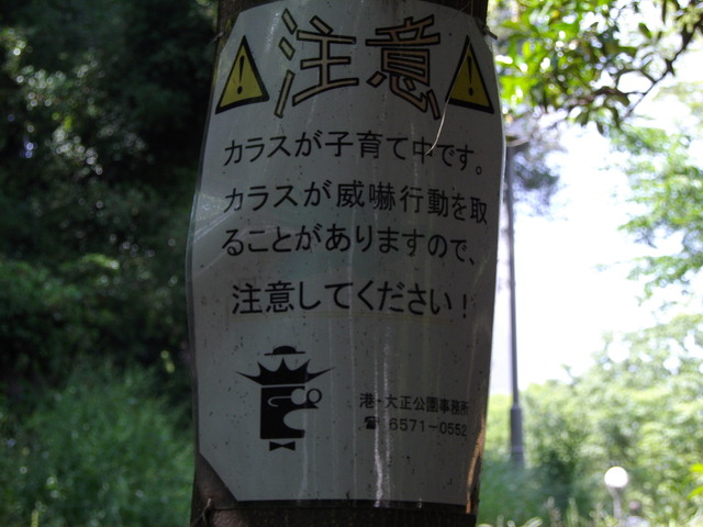 公園における一連の注意事項についての一考察_c0001670_2372529.jpg