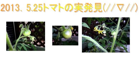 b0286989_0191934.jpg