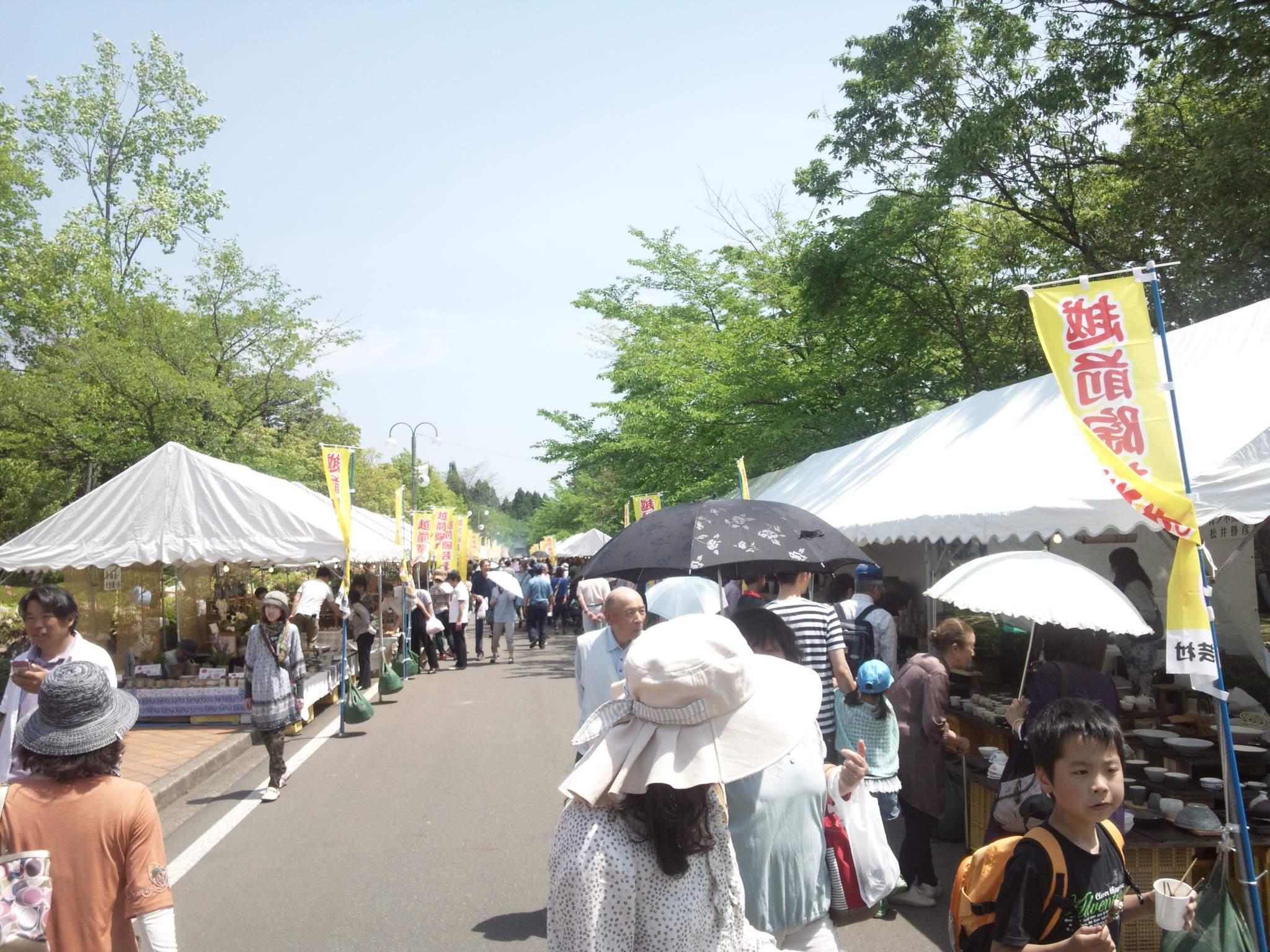今、越前陶芸祭りに来ています。_e0119092_12423662.jpg
