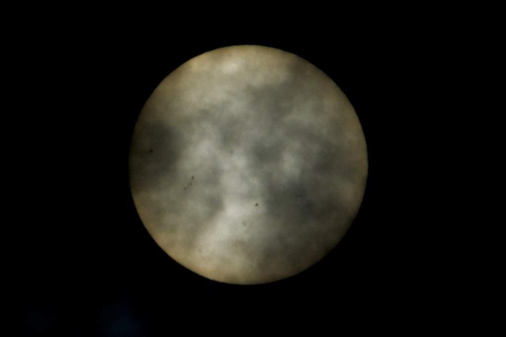 真っ黒なカワセミ/シジュウカラの雛/雲間の太陽_b0024798_527324.jpg