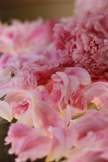 散り際まで美しい花_b0208604_17233871.jpg