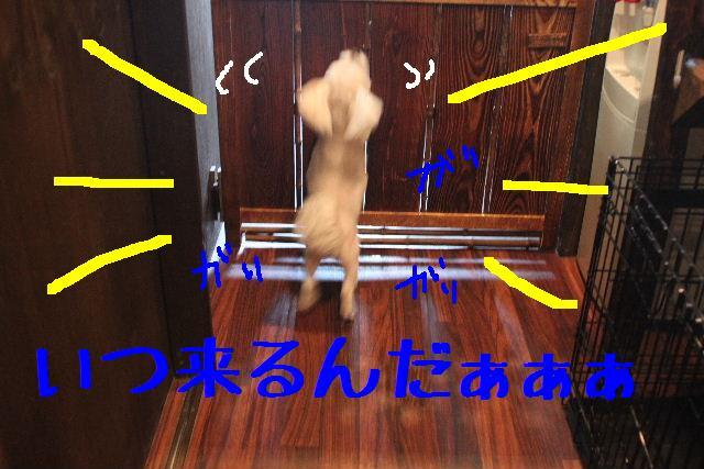こんばんわぁ~!!_b0130018_2211977.jpg