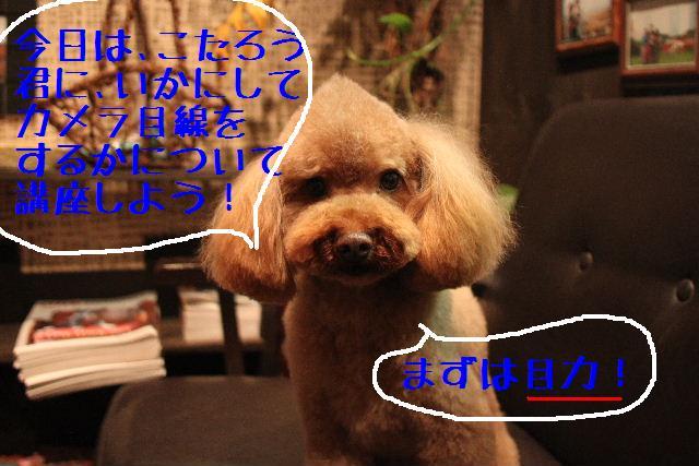 こんばんわぁ~!!_b0130018_22143430.jpg