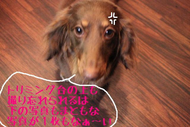 こんばんわぁ~!!_b0130018_2244717.jpg