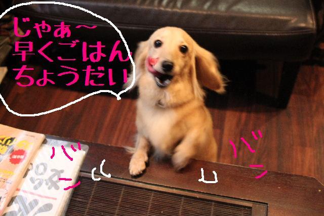 こんばんわぁ~!!_b0130018_2262086.jpg