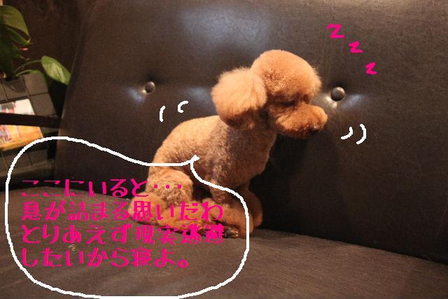こんばんわぁ~!!_b0130018_2285278.jpg