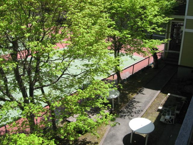 お部屋からの眺め_f0146620_12184342.jpg