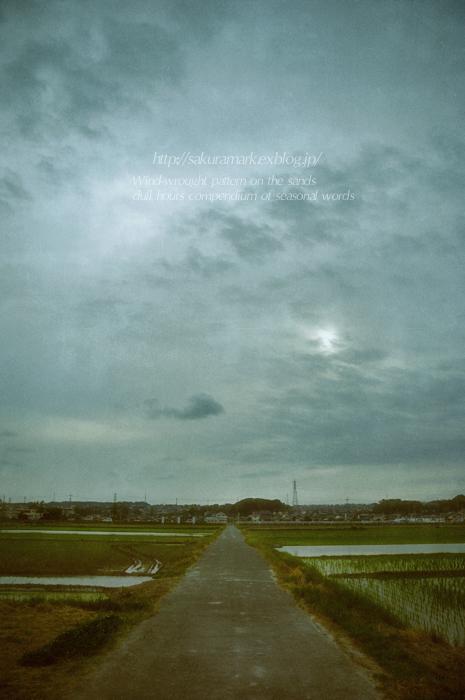 梅雨入り前。_f0235723_1959196.jpg