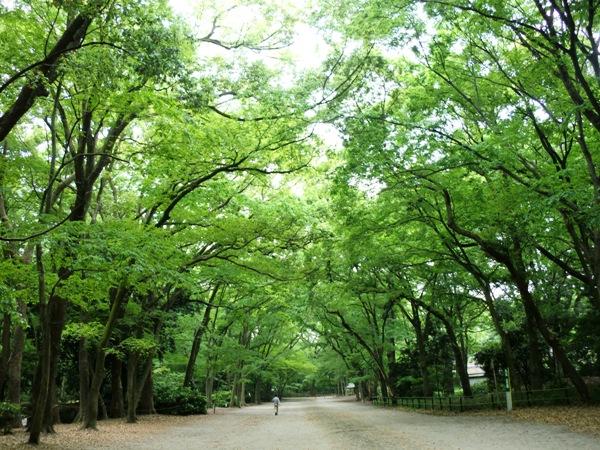 下鴨神社の申餅_a0111029_16482862.jpg