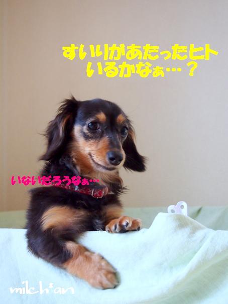 b0115642_22285833.jpg