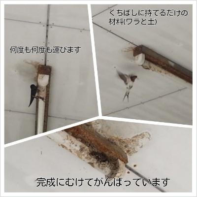 f0234053_1113460.jpg