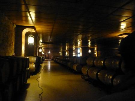 スペイン リオハシリーズ  リオハのワインを知る_b0011584_1321813.jpg