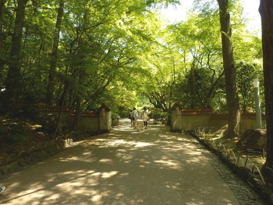 大山崎を歩く1 大山崎山荘美術館_e0048413_220640.jpg