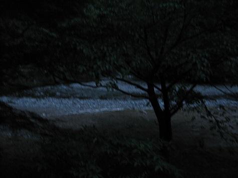 山道2_e0101917_6544028.jpg