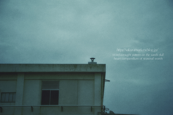 2013 梅雨入り。_f0235723_19335430.jpg