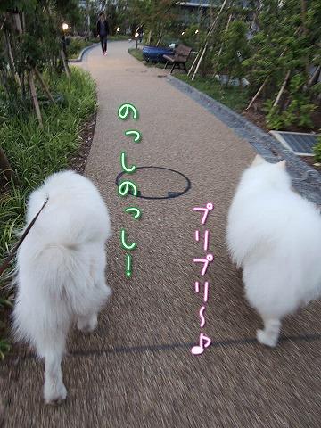 日曜のお散歩・後編_c0062832_752337.jpg