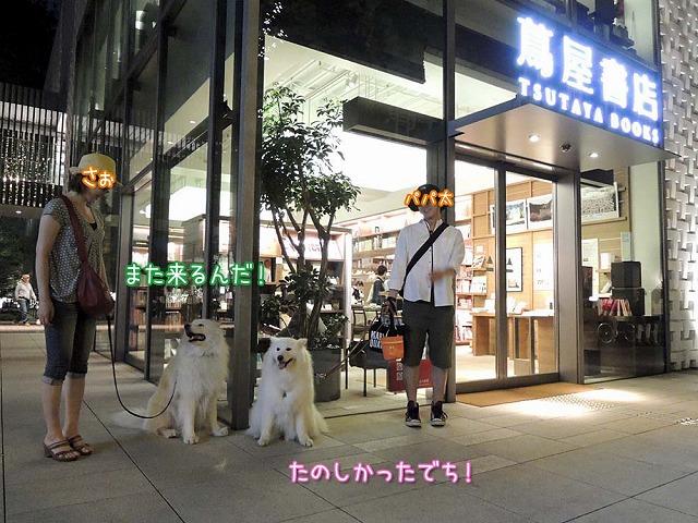 日曜のお散歩・後編_c0062832_755322.jpg