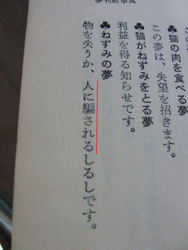 飼い猫キヨハルに化けた猫こそ、騙しのプロだった_d0061678_14125595.jpg