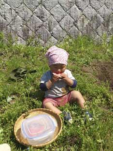 5月棚田部は、黒米の苗床作り & pieni..田植え大会! 6/22(土)です_c0008801_22172975.jpg
